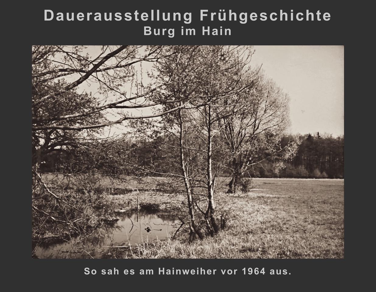 (2) Hainweiher vor 1964